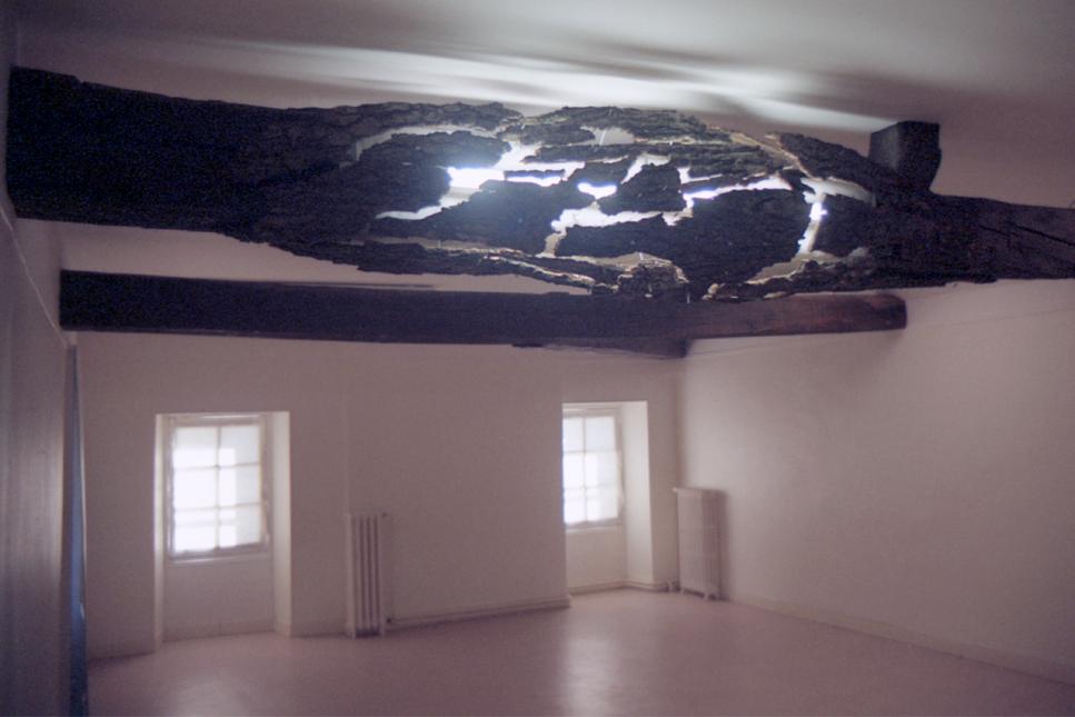 Installation une excroissance faite d'écorces enveloppant une poutre au bord de l'implosion